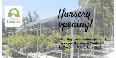 Image for nursery opening
