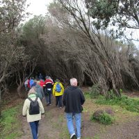 Visit to Catherine Hill Bay site