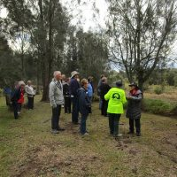 Guided walk at Lakeside Village Landcare site